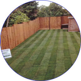 Garden Fencing across North London, Essex and Hertfordshire.